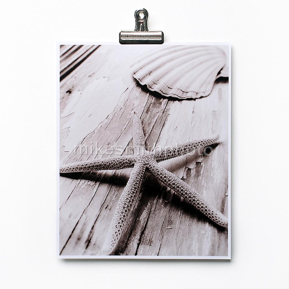 black and white starfish shell print sepia toned